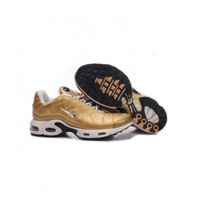 Vente chaussure nike air max tn beige Site Officiel 8642